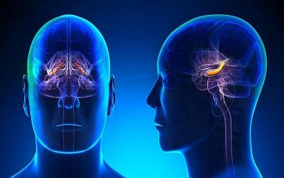 روش های بهبود وضعیت حافظه